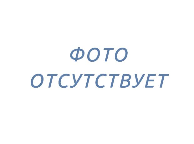 Забор на бетонной ленте с воротами в СНТ Ручеек, Красницы, Гатчинский р-н ЛО, отзыв Максима С.